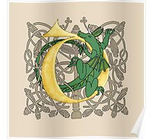 D is for Dragon Gold Poster