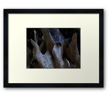 What am I ? ..............you guess.......! Framed Print