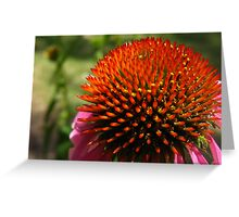 Prickly & Pink Greeting Card