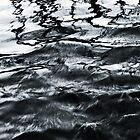 fluid by Phil Lane