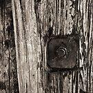 bolt by Phil Lane