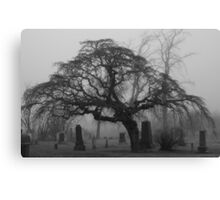 Foggy Resting Place Canvas Print