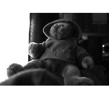 bear hugs Photographic Print