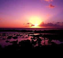 Purple Sunset by Sharon Holck