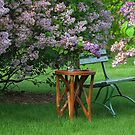 A Beautiful Place To Relax by Linda Miller Gesualdo