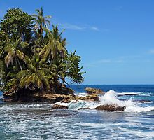 Tropical islet with lush vegetation by Seaphotoart