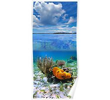 Cloudy blue sky with marine life underwater Poster