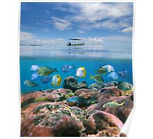 Boat above a coral reef with shoal of fish underwater Poster