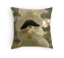 Mystical Butterfly Throw Pillow