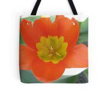 Orange and Lemon-aided Tulip Tote Bag