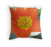 Orange and Lemon-aided Tulip Throw Pillow