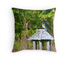 """""""The Gorgeous Eastern Bluebird"""" Throw Pillow"""