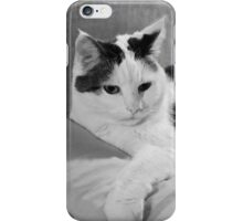 Munchkin on Mama's Pillow iPhone Case/Skin