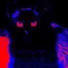 Owl Cat by Littlehalfwings