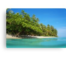 Tropical sandy shore with lush vegetation Canvas Print