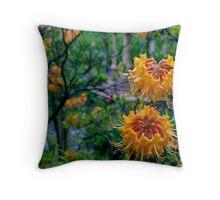 Overtly Orange - Longwood Gardens USA Throw Pillow