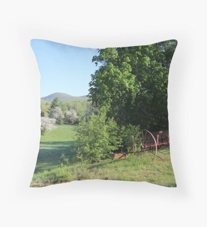 Paddock with Farming equipment Throw Pillow