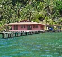 Caribbean house with dock over the water by Dam - www.seaphotoart.com