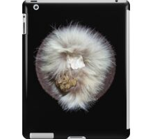 Earth Sky Water Shield iPad Case/Skin