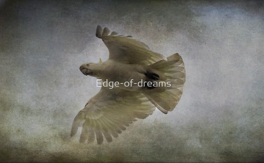 Born Free by Edge-of-dreams