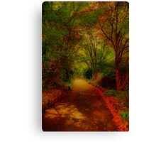 George's Pathway Canvas Print