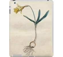 The Botanical magazine, or, Flower garden displayed by William Curtis V1 V2 1787 1789 0017 Narcissus Minor, Least Daffodil iPad Case/Skin