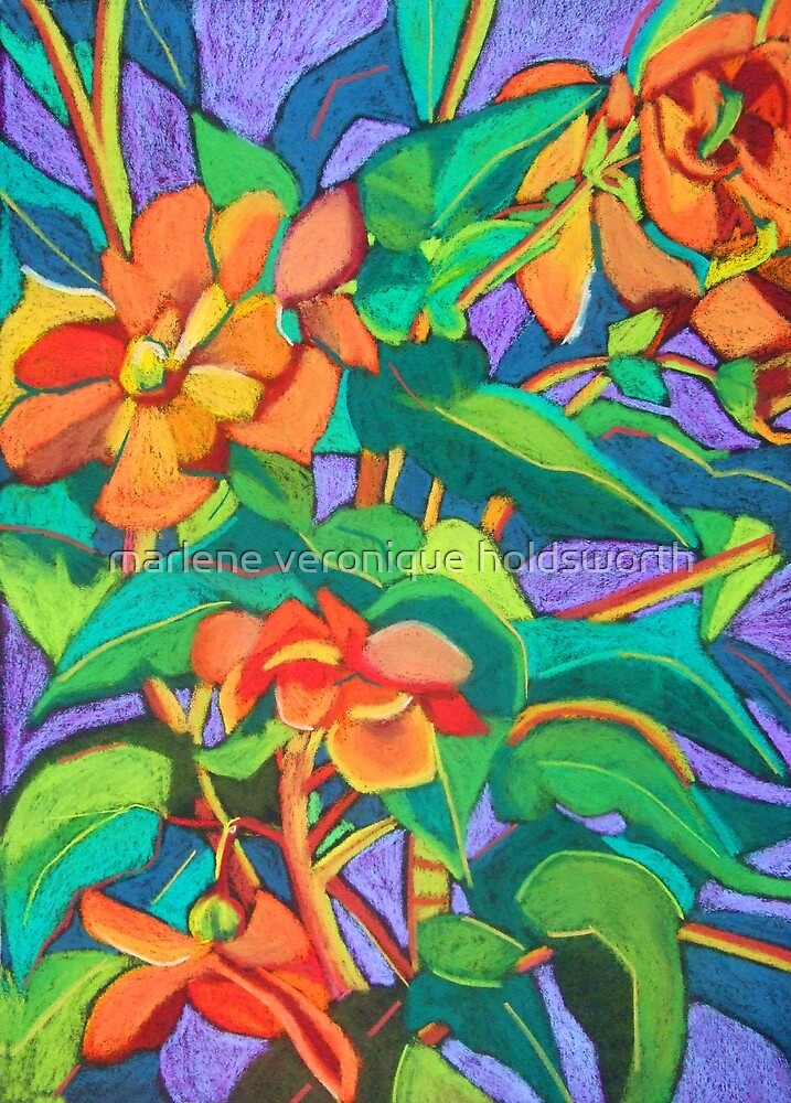 Orange Begonia by marlene veronique holdsworth