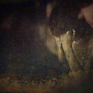 Silence by Gianmario Masala