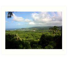 Barbados East Coast View - Farley Hill, Barbados Art Print