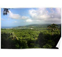 Barbados East Coast View - Farley Hill, Barbados Poster
