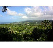 Barbados East Coast View - Farley Hill, Barbados Photographic Print