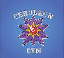 Cerulean Gym by nicholasgray