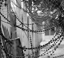 S21 prison razor wire by CRPH