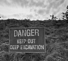 Danger by Shadowandlight