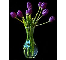 The purple bunch Photographic Print