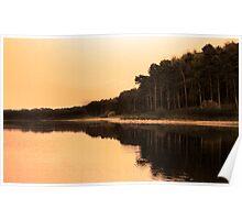 sepia reservoir Poster