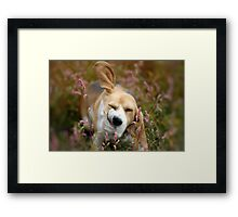 And just a shake to the head . . . .  Framed Print