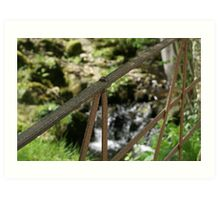old iron gate by stream in Hawkshead Art Print