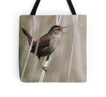 A Song of Spring Tote Bag
