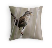 A Song of Spring Throw Pillow