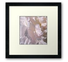 Petal Pink Pleasure... Framed Print
