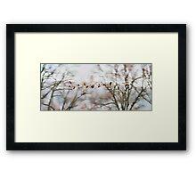 Geese Flock Framed Print