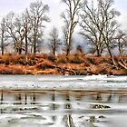 Winter River Trees by ezindo