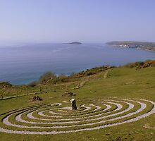 Devon: The Labyrinth on Bodigga Cliff by Rob Parsons