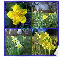 Yellow Spring flowers  ~ Marigold, Daffodils & Oxlips Poster