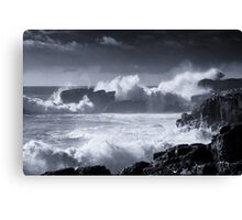 Forces Of Nature II Canvas Print