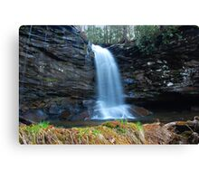 Falls of Hills Creek  Canvas Print