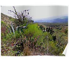 Ecuador Badlands  Poster
