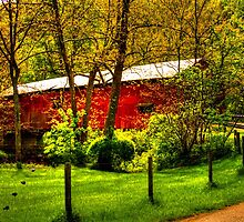 Baker's Camp Covered Bridge by David Owens