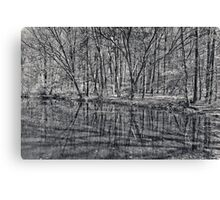 reflection of trees Canvas Print